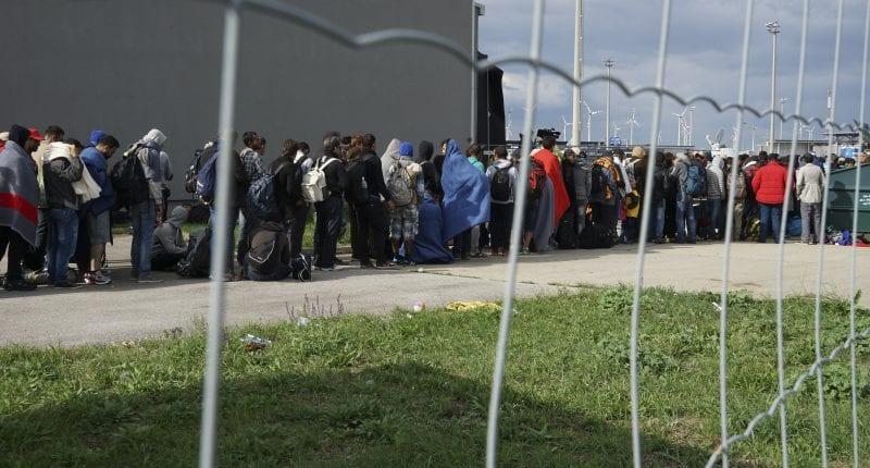 sirija migranti